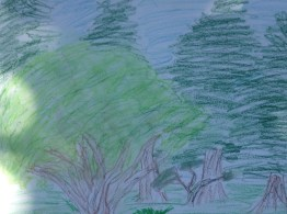 Apple tree with pines behind. Drawing by Elizabeth.