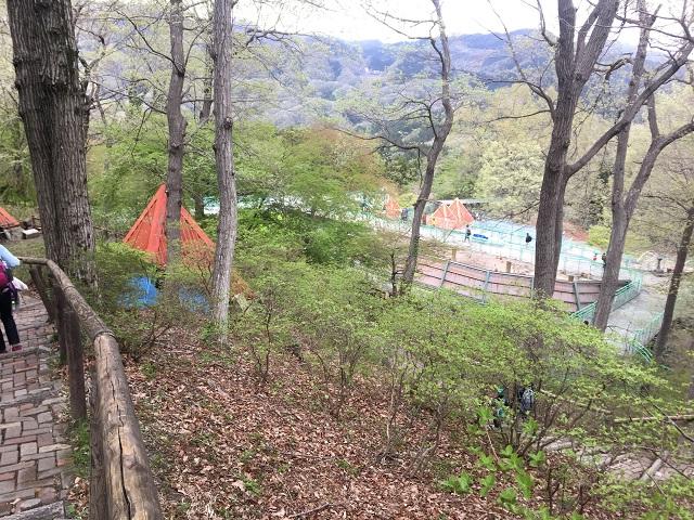 宝登山小動物公園 園内 斜頚