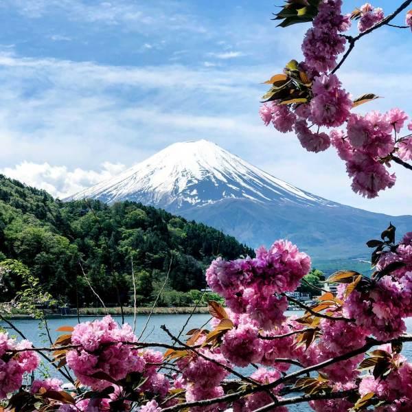 Cycling around Lake Kawaguchiko