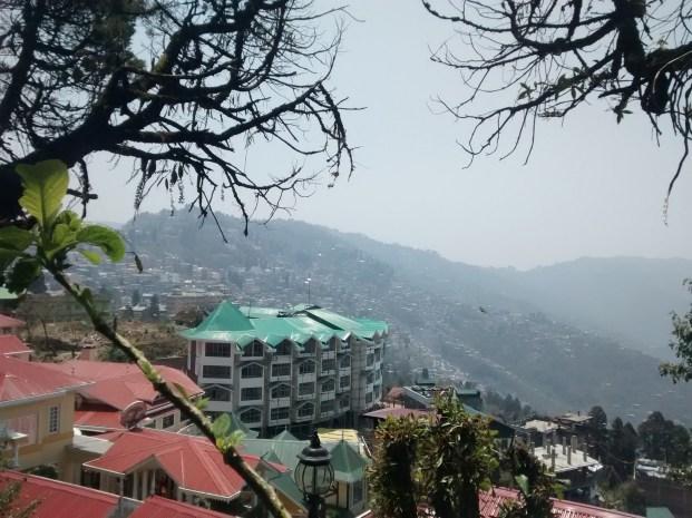 Dear Darjeeling