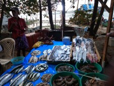 Some fresh sea food - Near the beach scenes