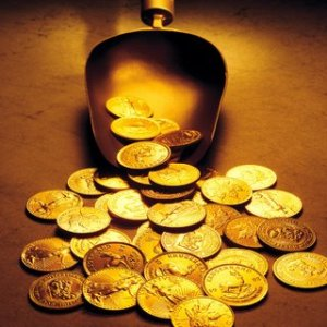 Gold Coins Scooper Table