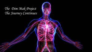 Dim Mak Project Novice Course