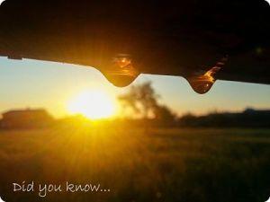 morning-sun-702926_1280 (3) copy_opt