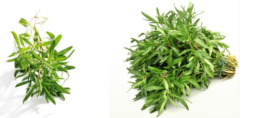 Рецепты с использованием чая. Азербайджанский чай с чабером.