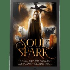 iPad - Soul Spark Anthology 500