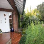 E-Wurf Fanny neues Zuhause in Voltlage 04