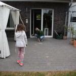 H-Wurf Happy Haydee neues Zuhause in Steinfurt 10