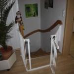 I-Wurf Icerevue neues Zuhause in Senden 12