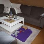 J- Wurf Japser neues Zuhause in Stuhr 12