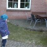 L-Wurf Legendary neues Zuhause in Wankendorf 08