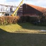 L-Wurf Legendary neues Zuhause in Wankendorf 13