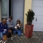 L-Wurf Lovely neues Zuhause Baunatal 15