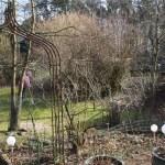 L-Wurf Lover neues Zuhause in Eickeloh 07