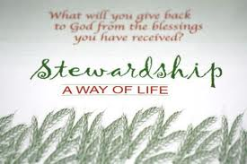 Stewardship 22