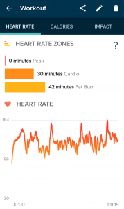 Heart Rates on the FitBit App for Android