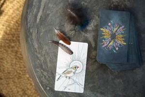 Birds Oracle Deck Reset Journey
