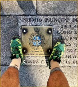 Buen Camino Santiago de Compostelle (110)