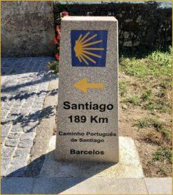 Buen Camino Santiago de Compostelle (43)