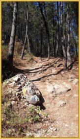 Buen Camino Santiago de Compostelle (58)