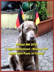 Fußball WM 2018 1. Deutschlandspiel (1)