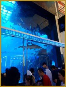 Unsere Schulungsfahrt mit Kultur nach Dubai (3)