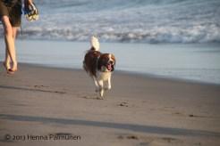 Toni at La Selva Beach