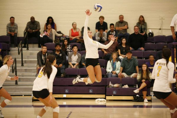 Bria Morgan of the San Francisco State Gators prepares to spike back the ball during a match against the Cal Poly Pomona Broncos. The Gators won the match 3-2 Friday, Sept. 26, 2014. Martin Bustamante / Xpress.
