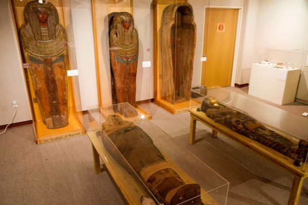 """Nes-Per-N-Nub rests beside the lid to his inner sarcophagus while the two outer sarcophagi stand on display in the background Tuesday, Oct. 21, 2014. Nes-Per-N-Nub is one of two mummies in the possession of SF State's Museum Studies Program on the 5th floor of the Humanities Building. """"Nes"""" as they call him, was buried encased in a unique triple-nested sarcophagus, which consists of three coffins. With the current Museum Studies collection in a state of transition, the mummies are not currently on display, and are expected to be moved to another location in the coming Spring semester once an exhibit space is entirely prepared for their transition. Eric Gorman/Xpress."""