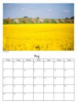 calendar-v36
