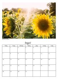 calendar-v39