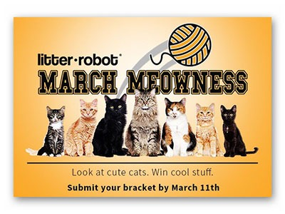 Litter Robot March Meowness Giveaway