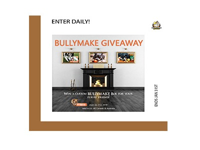 win a custom bullymake box