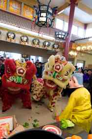jing wo lion dance calgary 2014 chinese new year centre street temple