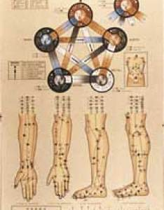 element acupoint chart also by honma rh goldenneedleonline