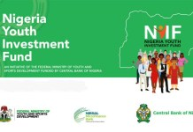 N75 billion youth investment fund
