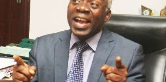 You Can't Arrest Igboho If You Spared Others Who Issued Quit Notices – Falana