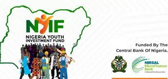 Nigeria Youth Investment Fund - All you Need to know about NYIF Grant (Complete guide)