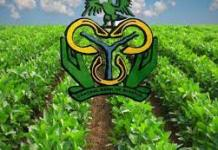 Apply for CBN Agricultural Loan 2021 – See How to Apply