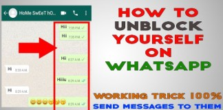 How To Unblock Yourself On Whatsapp If A Contact Blocks You