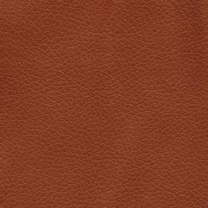 Golden Technologies of Canada  Fabrics