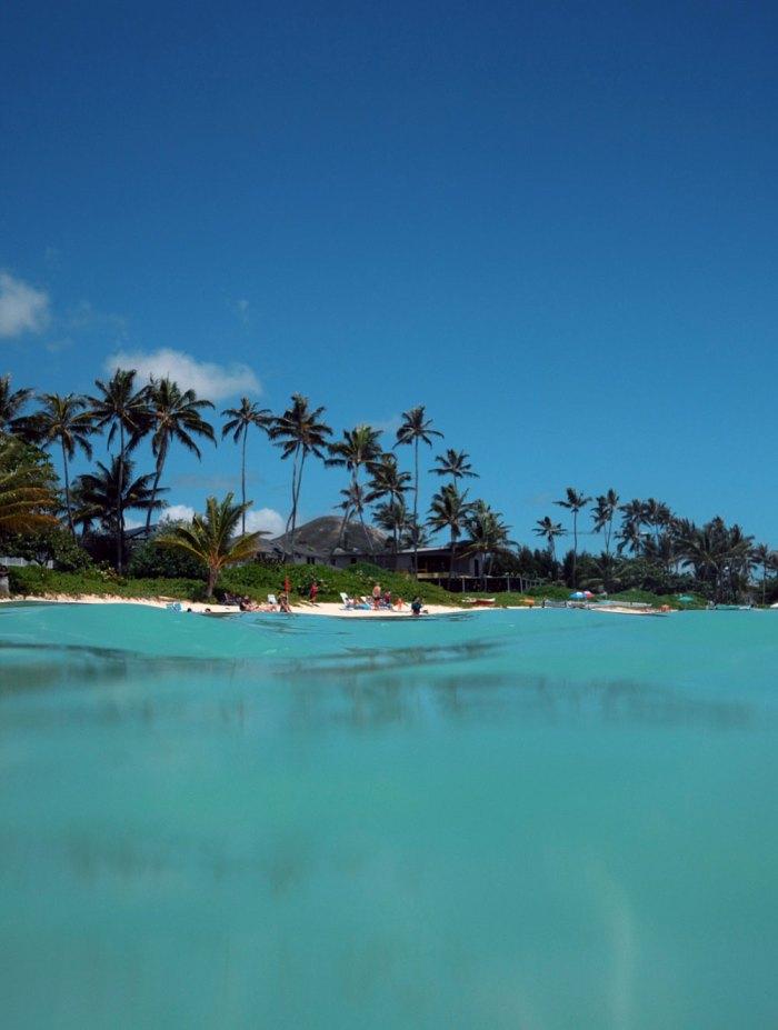 Oahu Was Calling Goldfish Kiss Utforsk et stort utvalg av feriehus, bant annet hus, villaer og mer. goldfish kiss