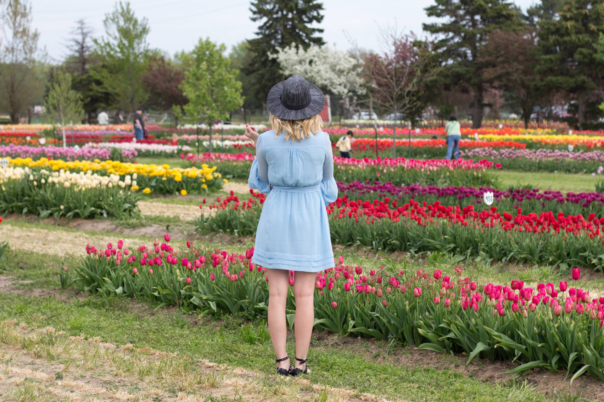Bell Sleeves in a Flower Field | Gold-Hatted Lover