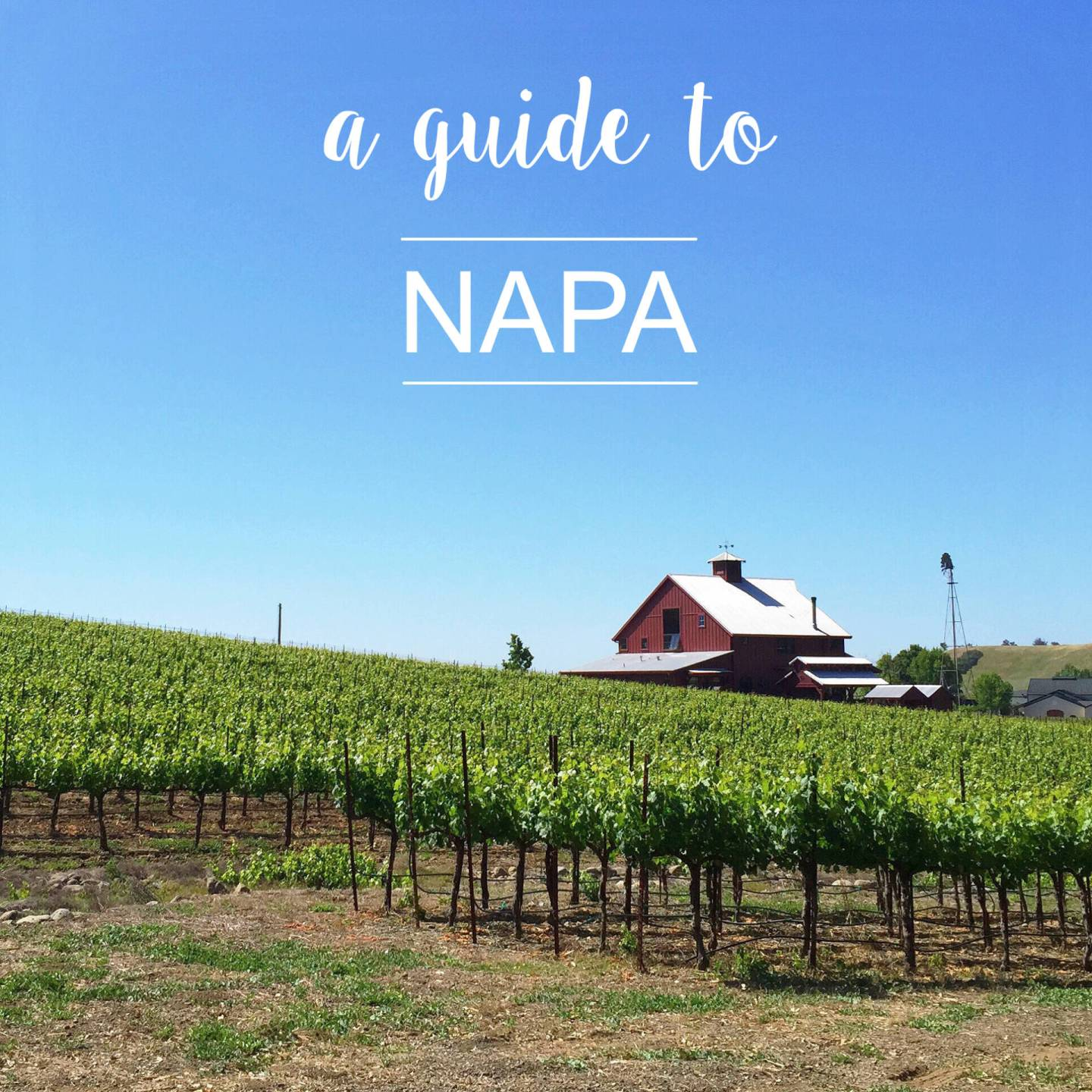 Napa Travel Guide: what to do, see, eat and drink | Gold-Hatted Lover