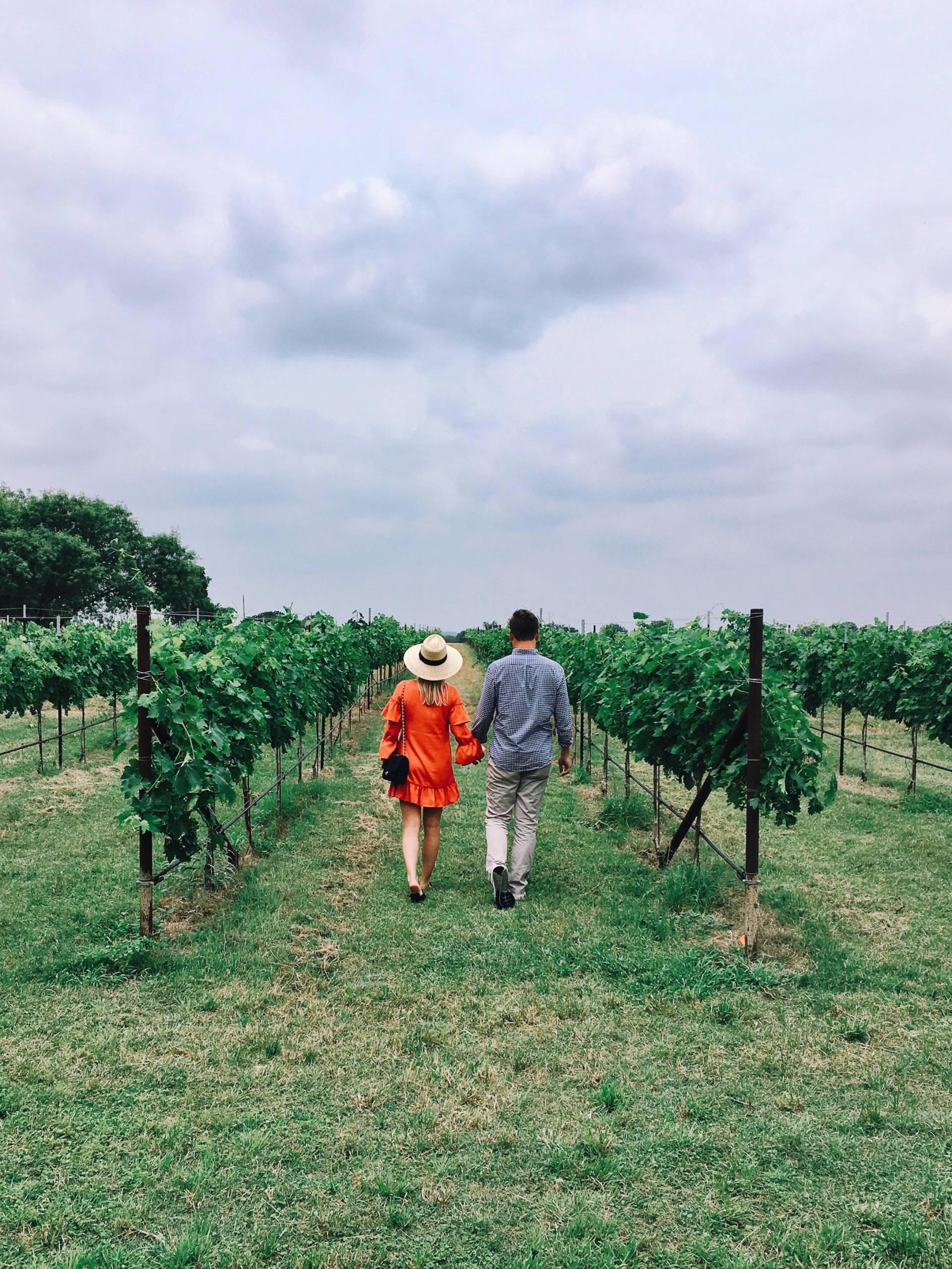 Memorial Day Weekend Wine Tasting at Becker Vineyards
