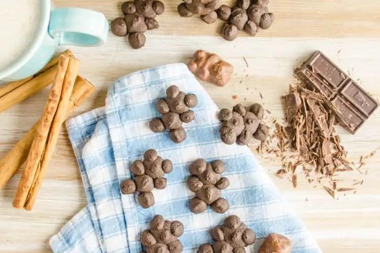 Chocolate Cinnamon Bear Cookies