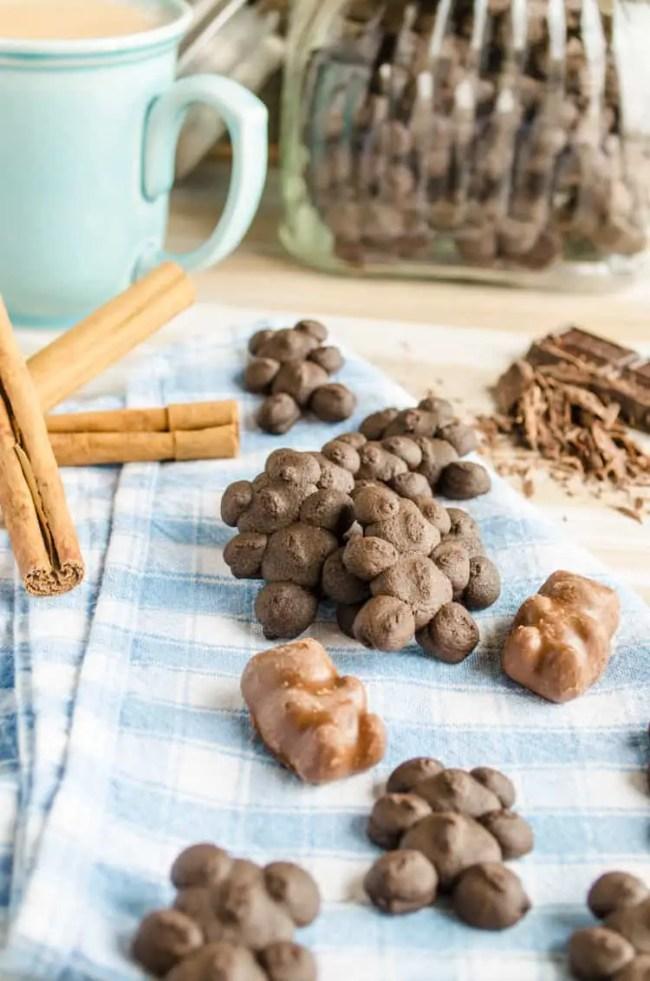 Chocolate Cinnamon Bear Cookies with Chocolate Cinnamon Bear Candies
