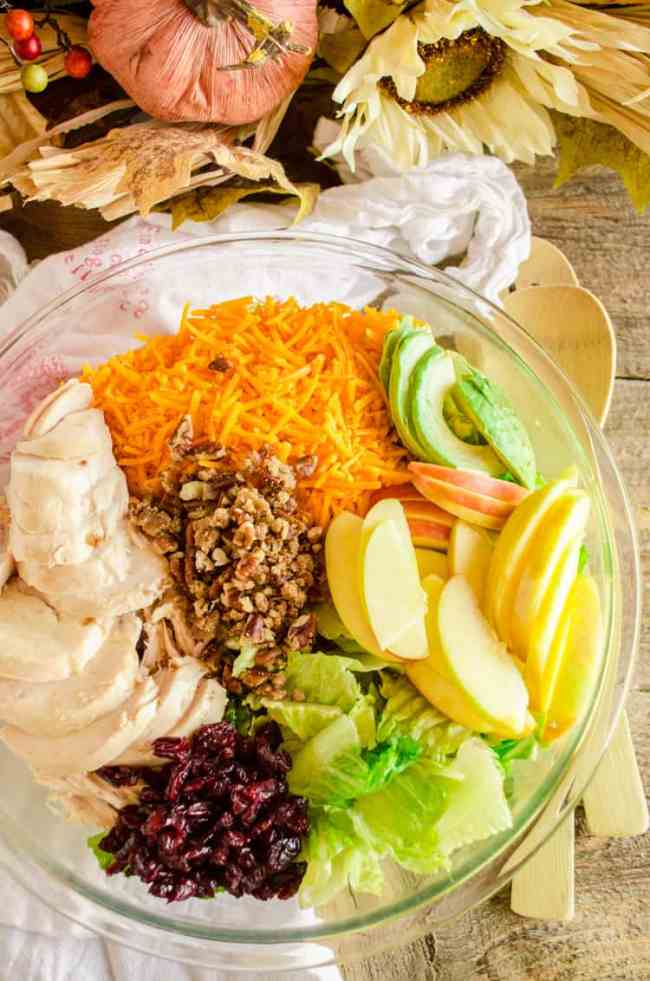 Chicken Apple Cheddar Salad ingredients sit partitioned in a large glass bowl, surrounded by fall decorations- The Goldilocks Kitchen