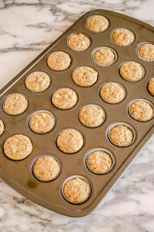 Mini Apple Cinnamon Cupcakes freshly baked and still in the mini muffin tin. - The Goldilocks Kitchen