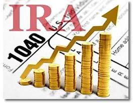 IRA Investment 2013